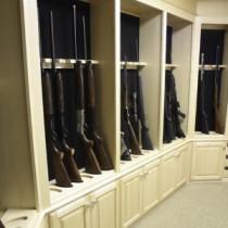 Walk In Closet Gun Safe Best Closet Gun Safe