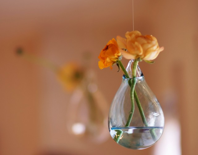 Hanging Glass Flower Vases
