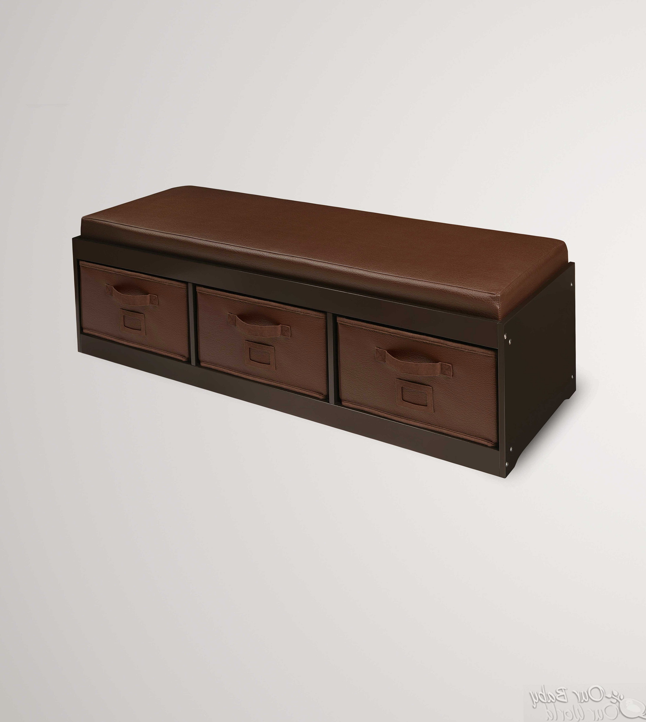 Wood Storage Bench With Cushion