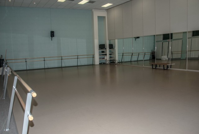 Dance Studio Mirrors Price