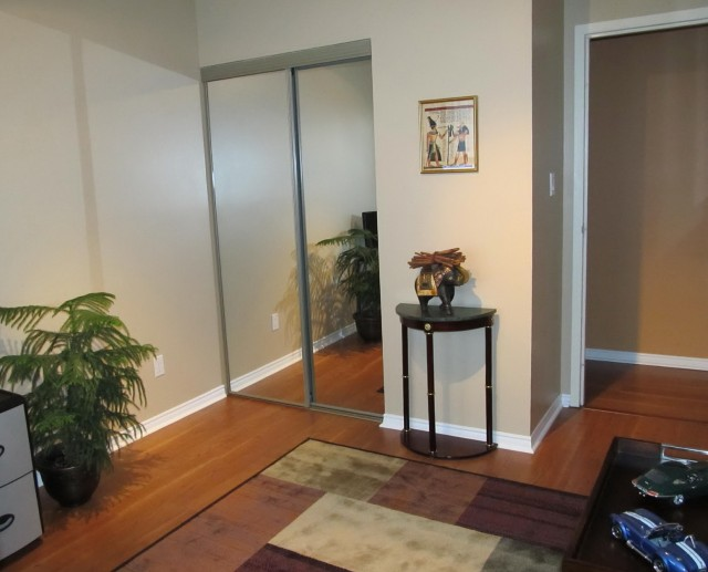 Mirrored Sliding Closet Doors 96