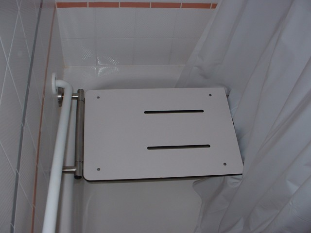 Transfer Tub Bench Shower Curtain