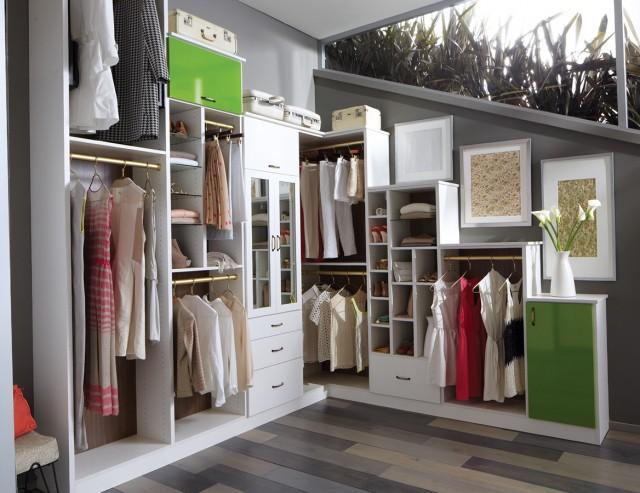 Professional Closet Organizer Jobs Home Design Ideas