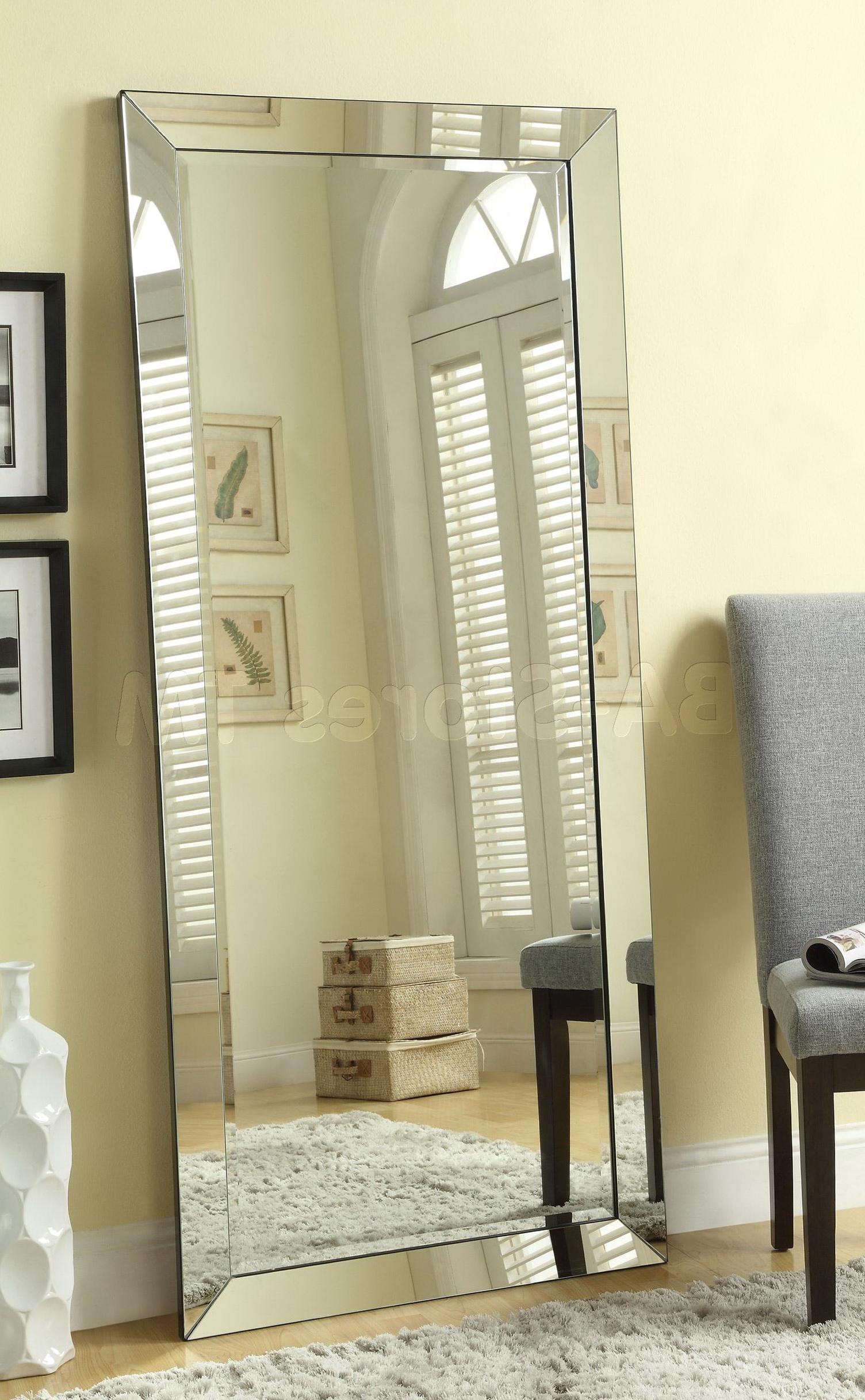 Floor Mirrors Silver Frame Home Design Ideas