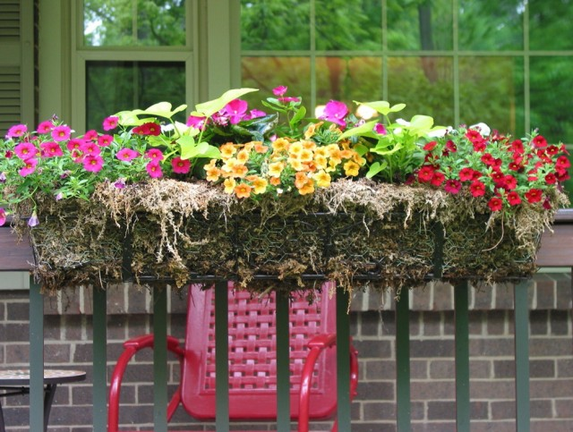 Deck Flower Boxes Railing