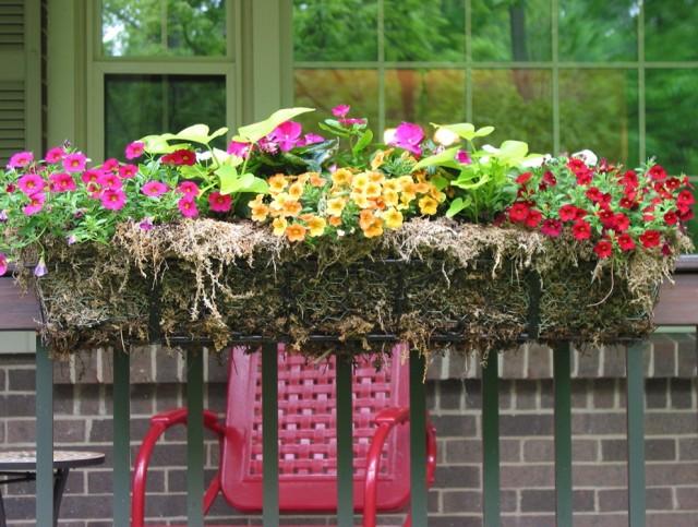 Deck Flower Boxes Railing