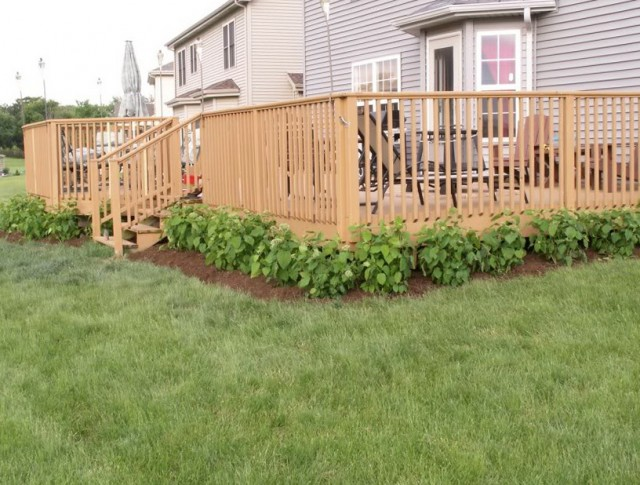 Landscaping Around Raised Deck