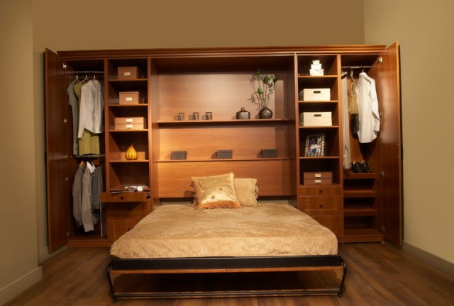 Bed In A Closet Ideas