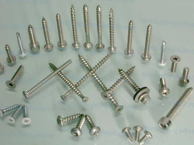 Stainless Steel Deck Screws Bulk