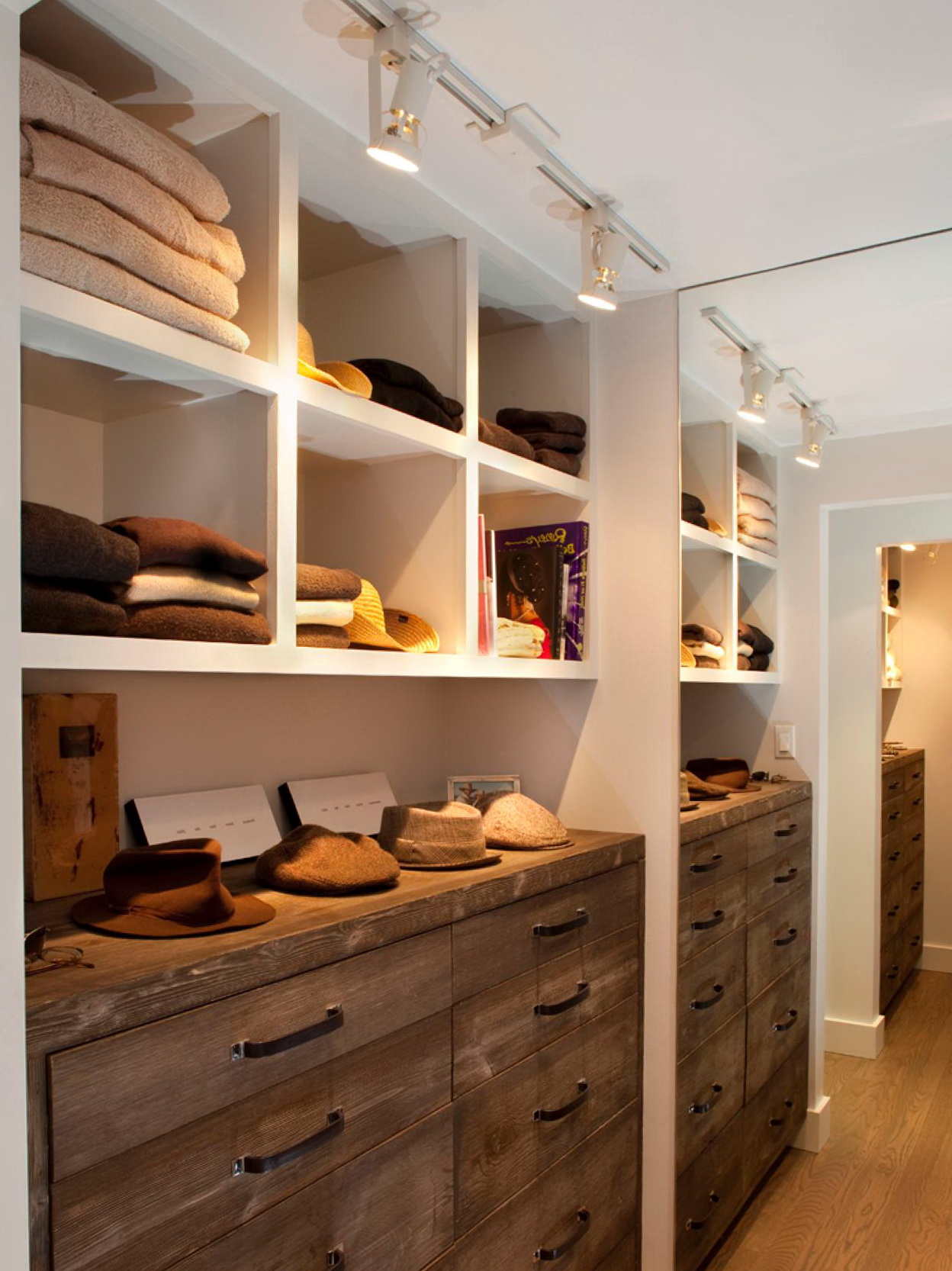 Walk In Closet Lighting Houzz Home Design Ideas