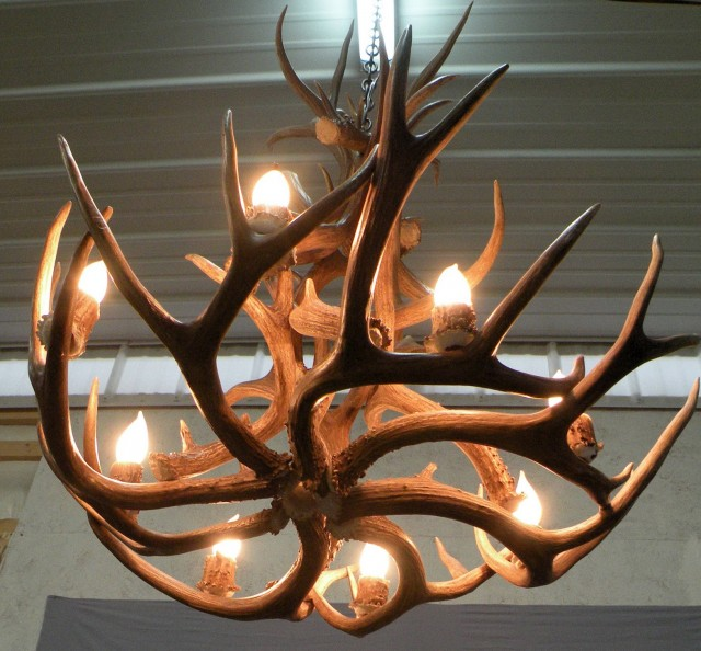 Diy Deer Antler Chandelier Home Design Ideas