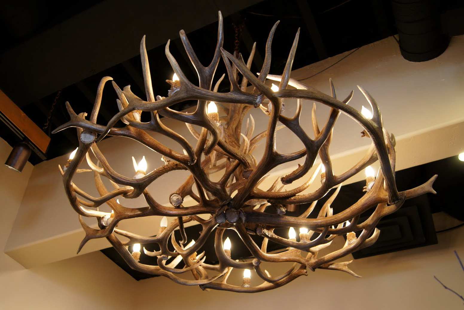 Deer antler chandelier nz home design ideas deer antler chandelier nz arubaitofo Image collections