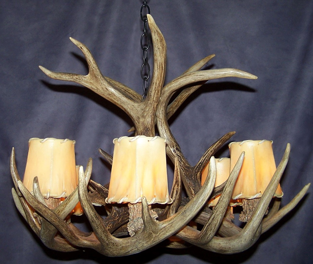 Deer Antler Chandeliers On Ebay