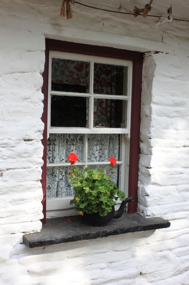Lace Curtain Irish Shanty Irish