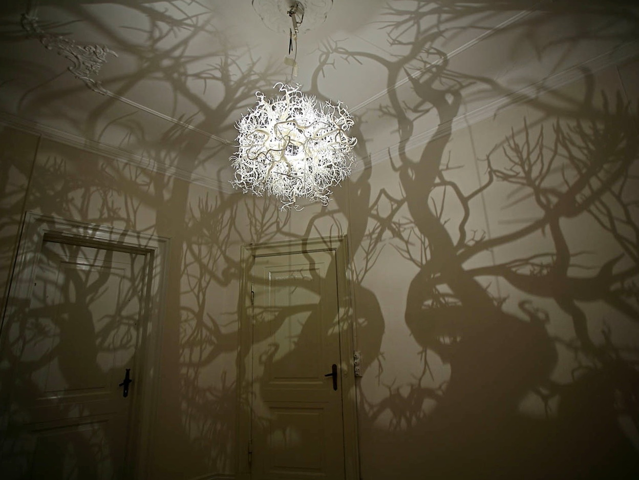 Tree Branch Shadow Chandelier Home Design Ideas