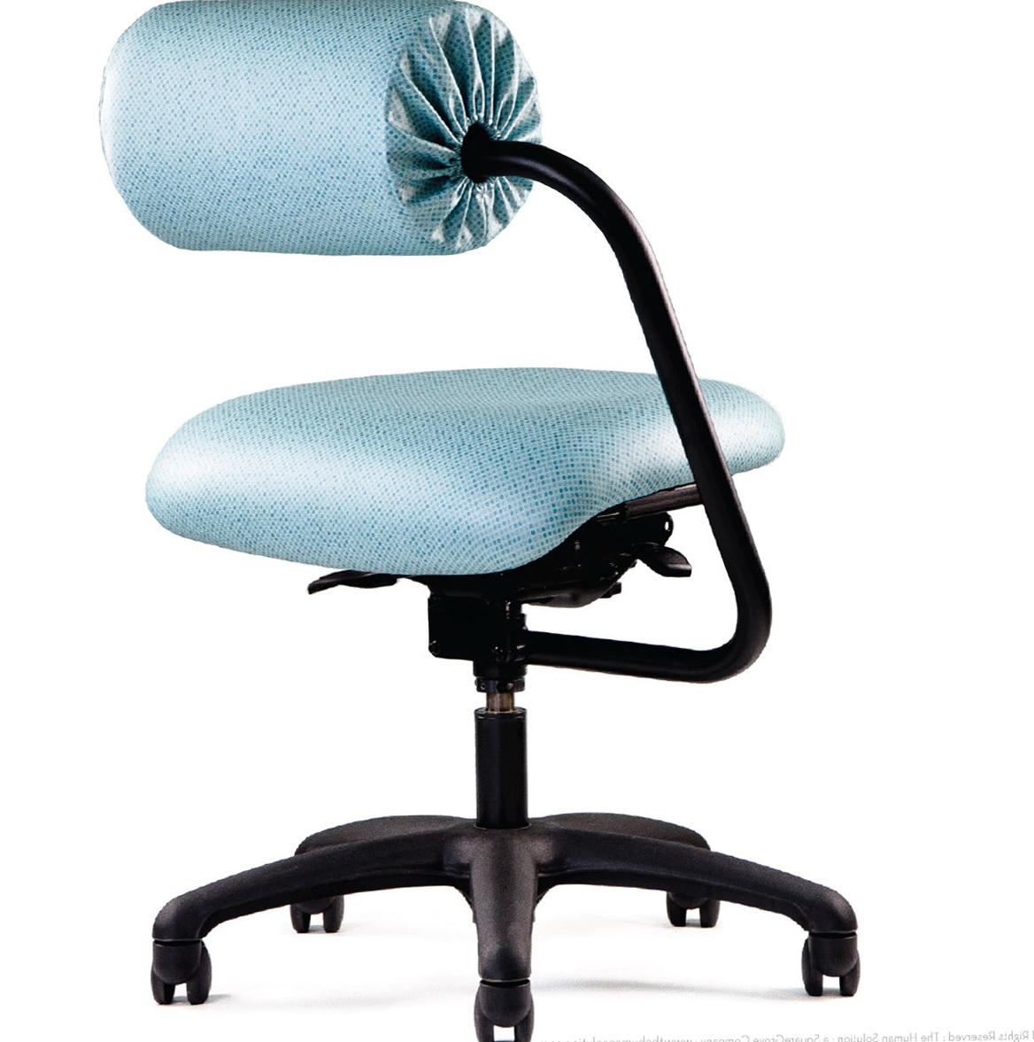 Office chair posture cushion home design ideas - Office chair cusion ...
