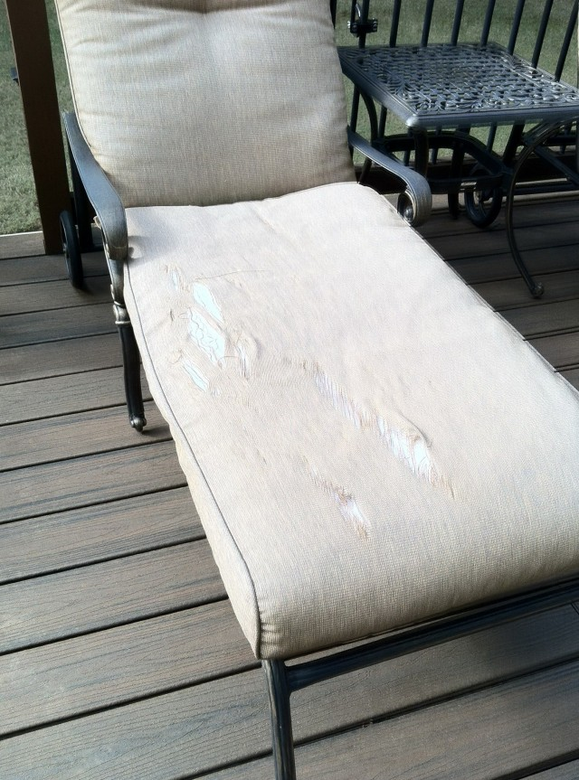 Replacement Patio Cushions For Martha Stewart Furniture
