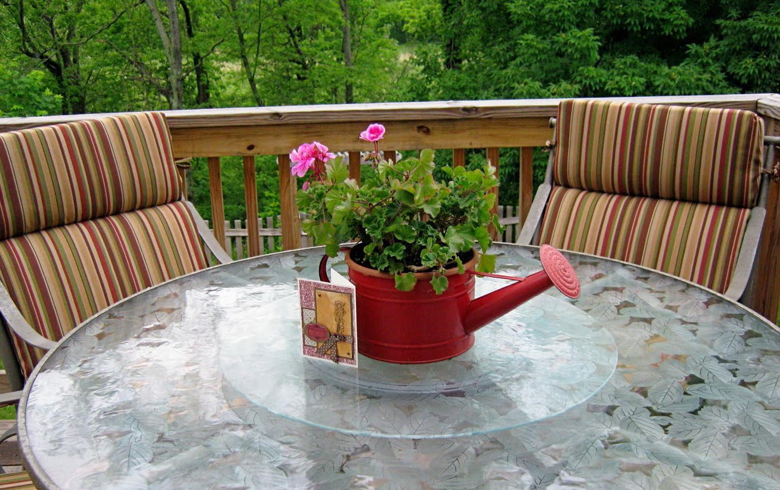 Martha Stewart Patio Cushions Kmart Home Design Ideas