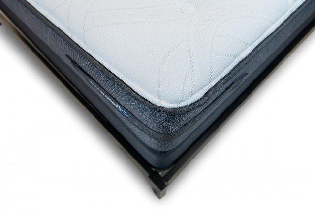 Sealy Posturepedic Cushion Firm