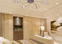 Chandelier Ceiling Light Fixtures