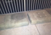 Cleaning Couch Cushions Cat Urine