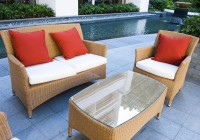 Cleaning Outdoor Cushions With Borax