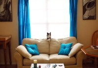 Curtain For Living Room 2014