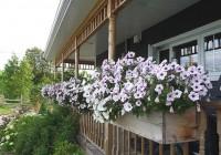 deck railing planters diy