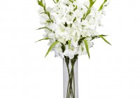 Flower Vases Wholesale Uk