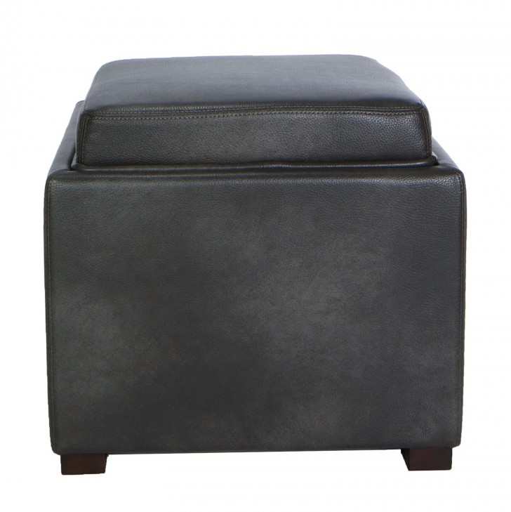 Permalink to Gray Storage Ottoman With Tray