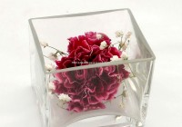 Large Square Glass Vases