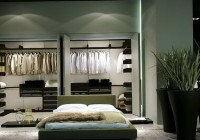 Master Bedroom Closet Organization Ideas Pinterest