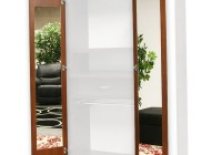 Mirrored Wardrobe Closet Doors