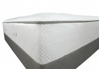 Sealy Cushion Firm Vs Plush