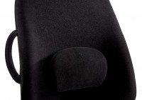 seat cushion for lower back pain