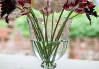 Small Glass Vases Uk
