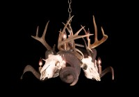 white deer antler chandelier