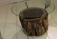 Wood Tree Trunk Side Table